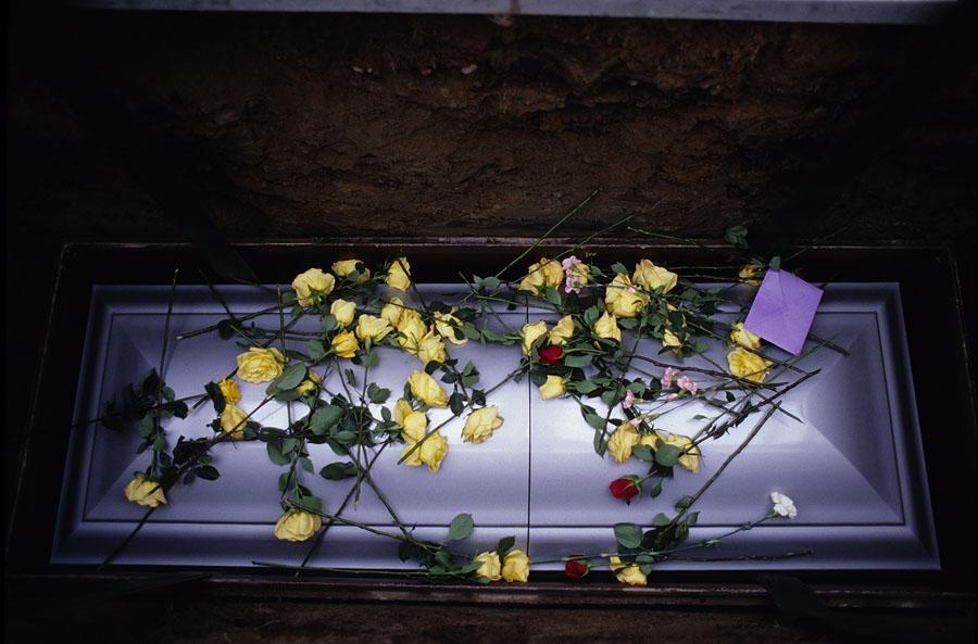 iraq_war_deaths_44