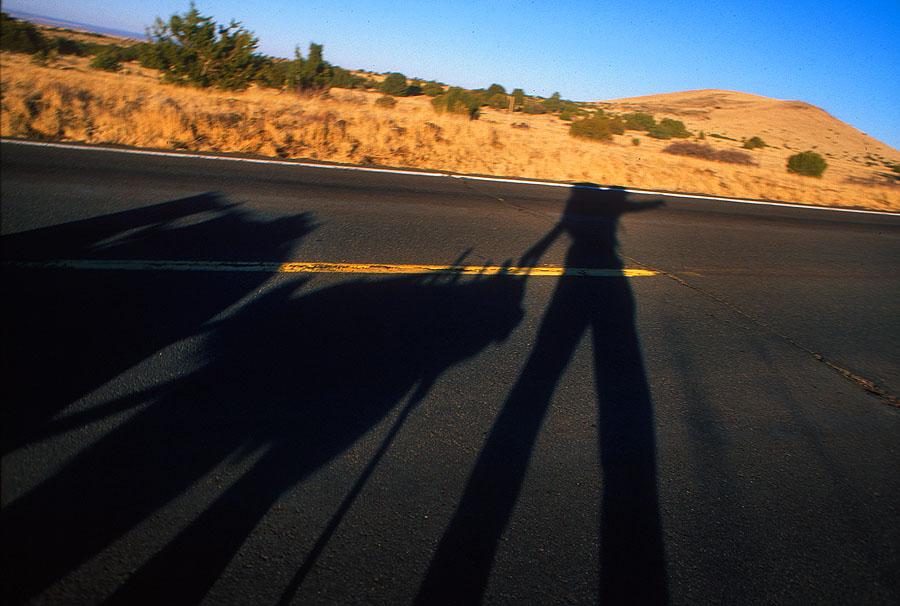 walk_snap_082