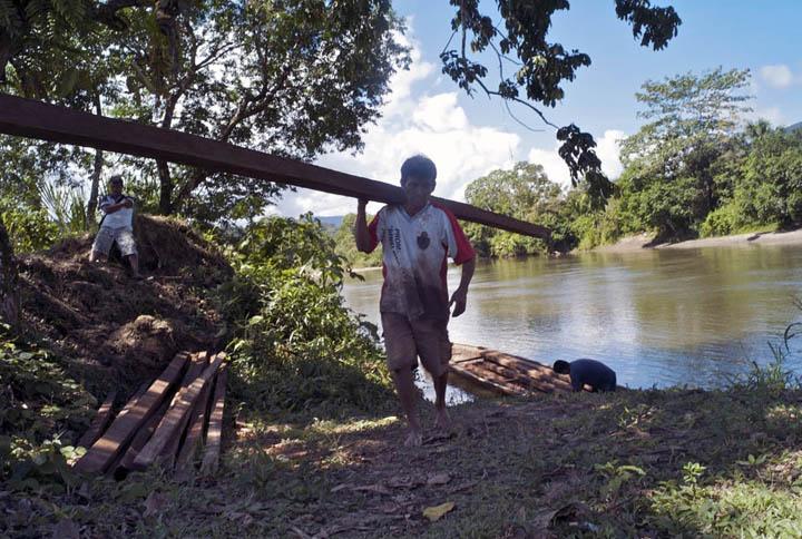 An Amazonian farmer, Lazaro Garcia, 49, unloads timber he cut in the nearby mountains.