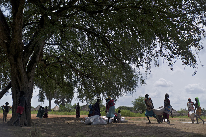 South Sudanese who have been living as internally displaced people (IDPs) gather under a large tree to distribute their monthly food rations. Thousands of South Sudanese became internally displaced refugees in Jonglei and Juba following the outbreak of fighting between forces loyal to South Sudan president Salvar Kiir and his ex-vice president Rick Machar in December 2013.