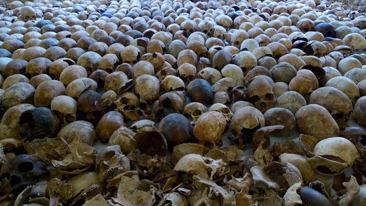 Hundreds of skulls are displayed on the floor inside a dark room.