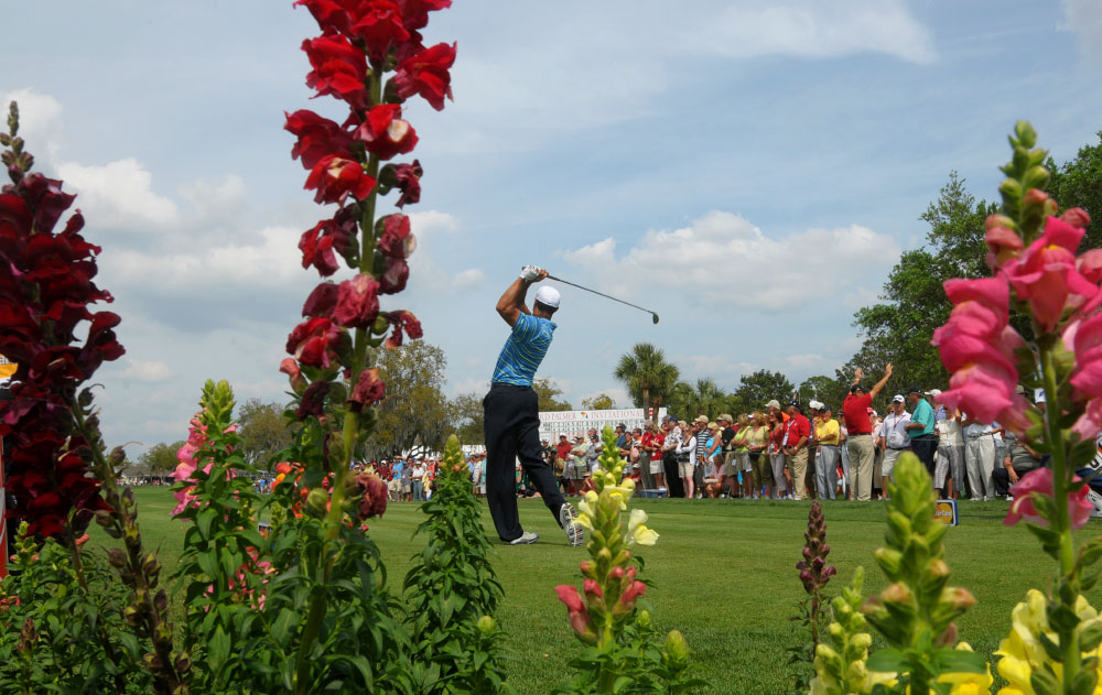 Tiger Woods is framed by blooming Snap Dragons while watching his tee shot on the 10th hole during the first round of the Arnold Palmer Invitational golf tournament in Orlando, Fla., on March 26, 2009.