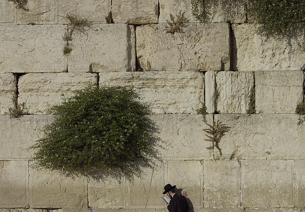 An Orthodox man prays at the Western Wall.
