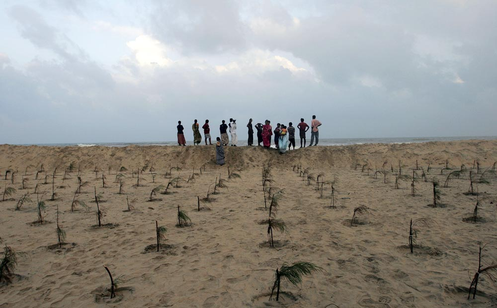 Residents watch the sea from a berm in front of hundreds of saplings planted to protect the village from future Tsunamis.   The village of Keechankuppam suffered huge losses in the Tsunami disaster which struck south Asia December 26, 2004.