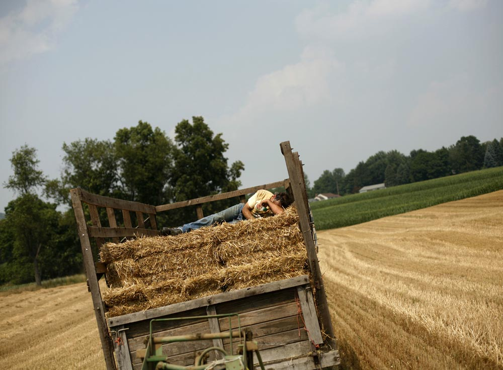 Lenny Hengst takes a short break in catching and loading straw on the wagon Tuesday.  The baler throws the bales onto the wagon every ten seconds, and each wagon holds approx 175 bales.  Farming in 90 degree weather in Warren County, NJ.  The Hengst boys, father Ray (age 80), and his sons Jr. and Lenny bale straw in one of their fields at R. Hengst Farm in Mansfield Twp.  Ray has owned the 600 acre farm since 1954.  Photographed for The Star-Ledger