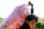 Stefka Todorova, 35, carries roses to be weighed in the rose garden of married couple Tihomir Tachev, 38, and Aleksandrina Aleksandrova, 38, in Buzovgrad, Bulgaria on May 23, 2018. This year, the two joined rose producers across Bulgaria's Rose Valley, dumping out entire bags of flowers on Bulgaria's highways in protest against the low purchase prices by distilleries that process them into rose oil, the price of which has stayed relatively high. Rose flower prices, however, have fallen from 3 to 5 BGN leva (about $1.80 to $3 USD) per kilogram in previous seasons, to about 2-2.5 leva BGN (about $1.20-$1.50 USD) per kilogram this year - half of which rose producers say they use to pay their rose-pickers, and much of the rest for costs related to cultivating roses. Distilleries describe an over-saturated market, with more rose gardens popping up each year, which means some distilleries reject what surpasses their capacity. Through the farmers' whisper networks runs a suspicion that distilleries have instead colluded to lower the purchase price of roses. Many say they'd like the government to regulate the entire chain between producers and processors - and even, set a contractual minimum purchase price. There is indeed a special rose subsidy in the works that the Minister of Agriculture, Rumen Porozhanov, plans to propose to the European Commission as early as next year. But a market economy, which is what Bulgaria's has been for nearly 30 years since the fall of Communism in 1989, is ruled not by the government but instead by supply and demand. Tihomir Tonchev, from the communications department of The Ministry of Agriculture, Food and Forestry, says it's simple math: the yield from rose gardens increased because the number of harvested gardens did as well, drastically dropping their product's purchase value. Tachev says, {quote}There's beauty in Bulgaria, there's nature, but there is no country to back you up. It's only during elections that politicians care