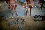 Indian men who practice traditional Kushti wrestling lift weights on Monday, June 01, 2009 in New Delhi, India.