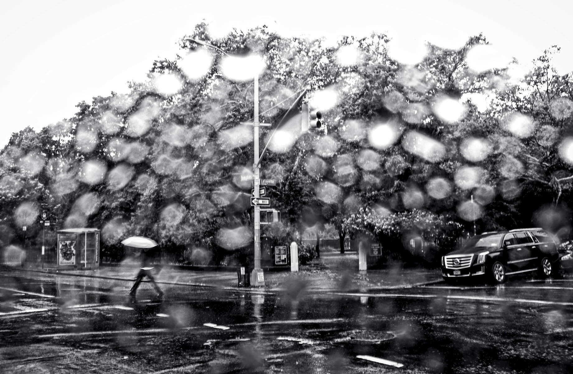 A man walks by Herbert Von King Park on a rainy day in Brooklyn, NY on July 24, 2017.Yana Paskova for The Wall Street JournalSLUG: RAIN