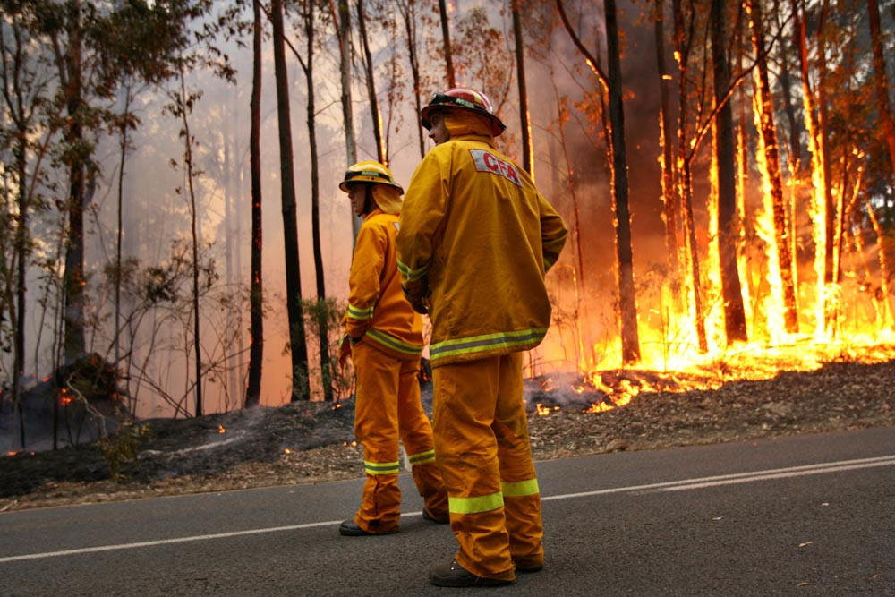 CFA crews from the Westbury region patrol the Coopers Creek fire as it burns to the edge of Tyres-Rawson Road near Erica.