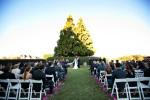 Chateau_Elan_Wedding_16