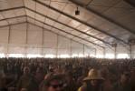 JazzFest201209