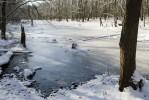 DesPlaines River