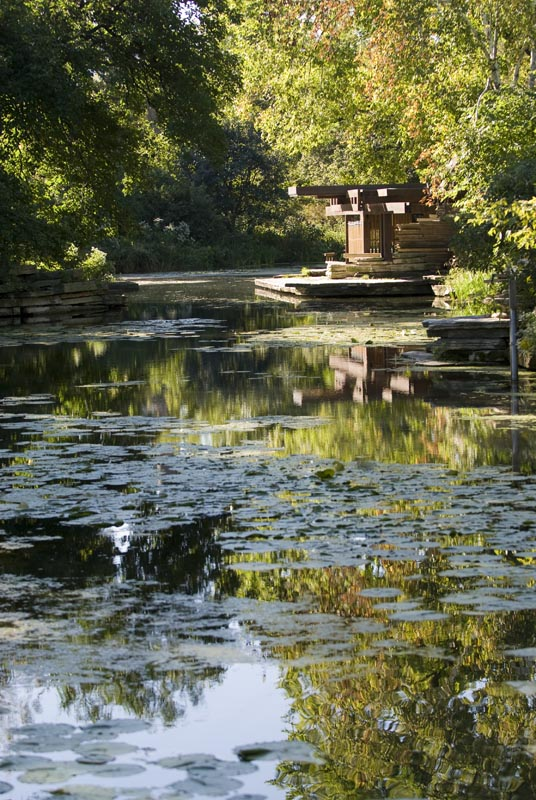 The Alfred Caldwell Lily Pool.