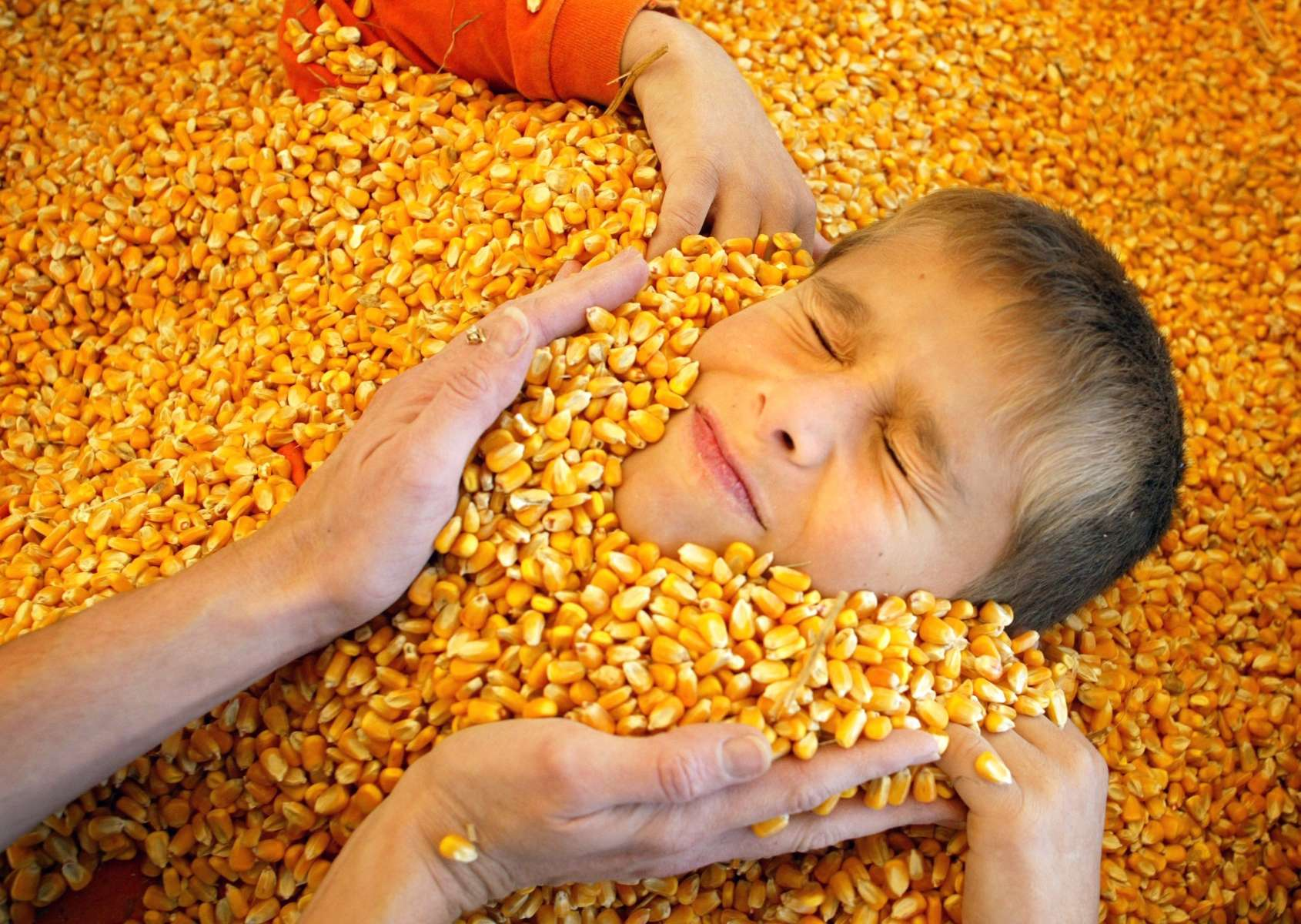 Bethalto West Elementary School fourth grader Chris Williams, 9, is buried in the {quote}Corn Crib{quote} play area at the Great Godfrey Maze during a school field trip.