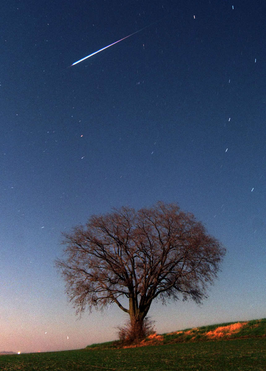 A meteor streaks across the heavens above a farm field in Highland Illinois during the Leonid meteor shower.  The field and tree are illuminated by light of from the full moon.