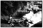 J_canoe_swan_wildcat001s