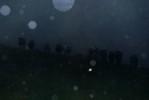rain_rain_fog_andcows_dusk_0278s