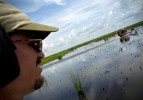 Wildlife biologist Stephen Stiegler, with the Florida Fish and Wildlife Conservation Commission's alligator management program, starts his day on Lake Okeechobee with other alligator egg hunters.