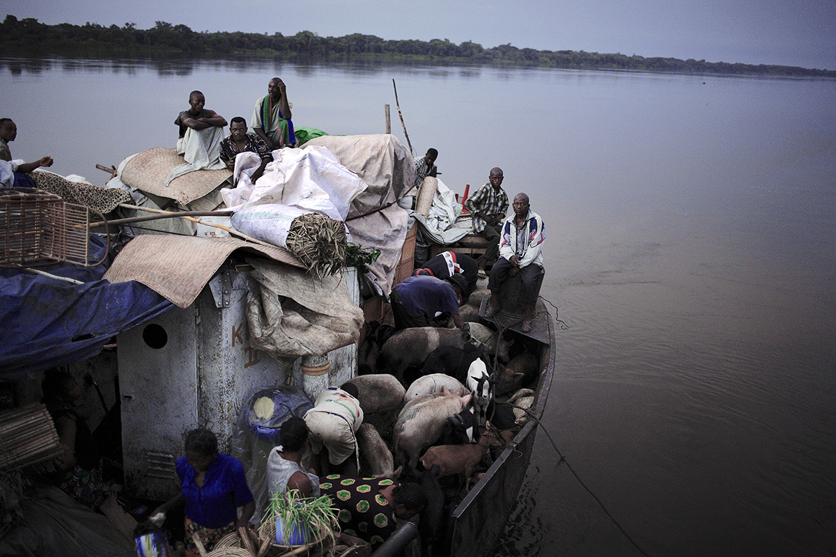 BOKONDO, DEMOCRATIC REPUBLIC OF CONGO APRIL 6: Unidentified people on a boat with destination Kinshasa on April 6, 2006 in Bokondo, Congo, DRC. Passengers sleep in the open, often on top of maize bags or other cargo. The boat carries many animals such as pigs, goats, crocodiles, monkeys, lizards, etc. The Congo River is a lifeline for millions of people, who depend on it for transport and trade. The journey from Kisangani to Kinshasa is about 1750 kilometers, and it takes from 3-7 weeks on the river, depending on the boat. During the Mobuto era, big boats run by the state company ONATRA dominated the traffic on the river. These boats had cabins and restaurants etc. All the boats are now private and are mainly barges that transport goods. The crews sell tickets to passengers who travel in very bad conditions, mixing passengers with animals, goods and only about two toilets for five hundred passengers. The conditions on the boats often resemble conditions in a refugee camp. Congo is planning to hold general elections by July 2006, the first democratic elections in forty years.(Photo by Per-Anders Pettersson)