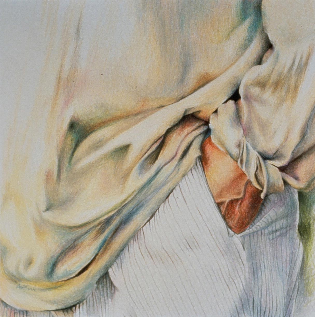 coloured pencil on paper  [SOLD]