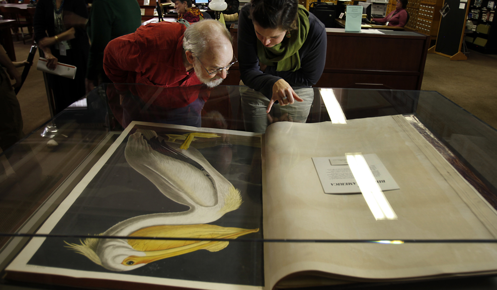 The books are huge -- bigger than a double page of newsprint. With maybe 60 copies in existence, they're worth about $11 million. And turning the pages is often a ritual that happens once a month or week. But now, the Academy of Natural Sciences has decided to turn the page of John James Audubon's famous book of bird paintings once a day in a public event.