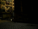 CAIRO_ALPA012