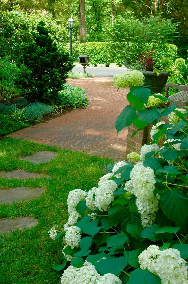 Annabelle hydrangeas line the irregular flagstone entrance patio used to gain entry into this extraordinary home.