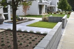 Originally this lot had a traditional front yard which consisted of only grass with a Chinese elm tree which made the layout awkward. Solow Design Group relocated the tree and ran with the idea of seperating the house from the street to give the space a courtyard effect, formal but not enclosed.