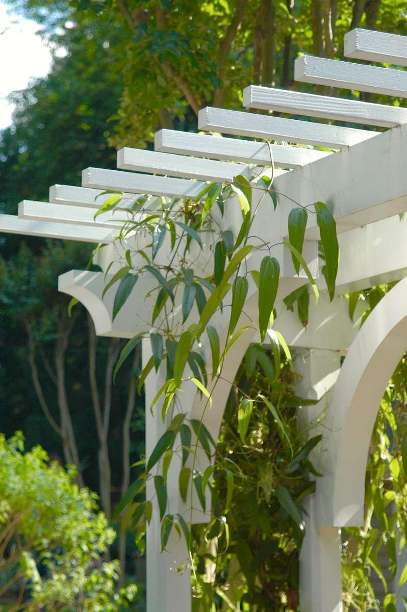 Details-of-custom-landscape-pergola-in-South-Charlotte