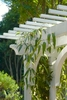 Details-of-custom-landscape-pergola-in-South-Charlotte