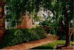 This quaint meandering path provides ground level travel around the home and is flanked by a unique corkscrew willow tree.