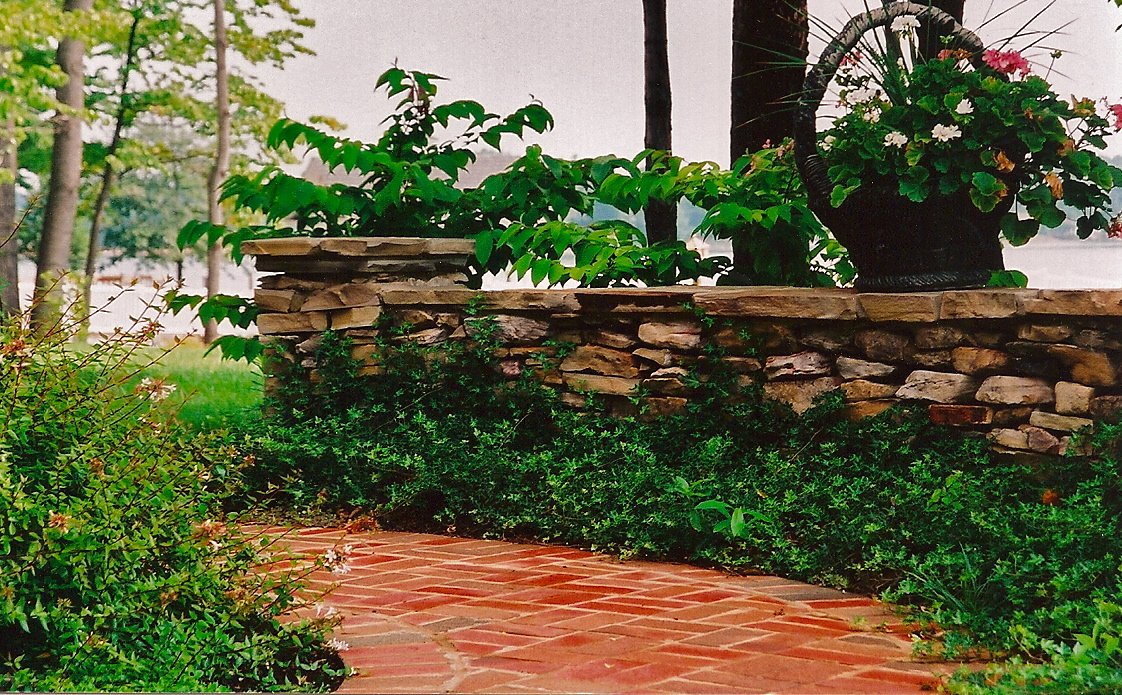 Form and function entertwine as pathways and stone walls unite to create flow amid masses of crinkle leaf ivy. A stone basket overflowing with seasonal color adds a touch of whimsy to the landscape.