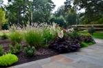 South-Charlotte-landscape-design-through-container-gardening