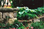 The majestic stone walls provide a buffer from the neighbors as well as creating a formal aesthetic.
