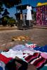 Mexico-mercado-perro-vestido-M1004271