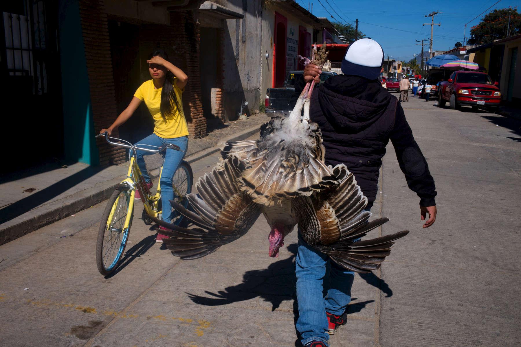 Mexico-pavo-y-bici-M1005215