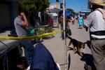Mexico-perro-layer-M1005251