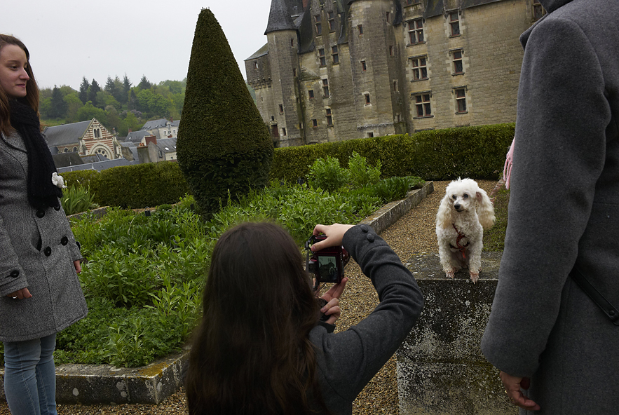Chateau de Langeais, family taking pictures of the dog, May 2013