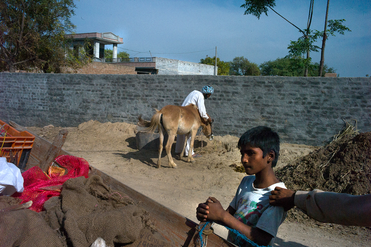 Punjab-L1371281-agarrando-el-hombro-1200