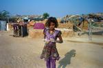 Rajasthan-series-37