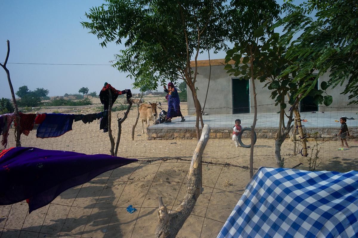 Rajasthan-series-41