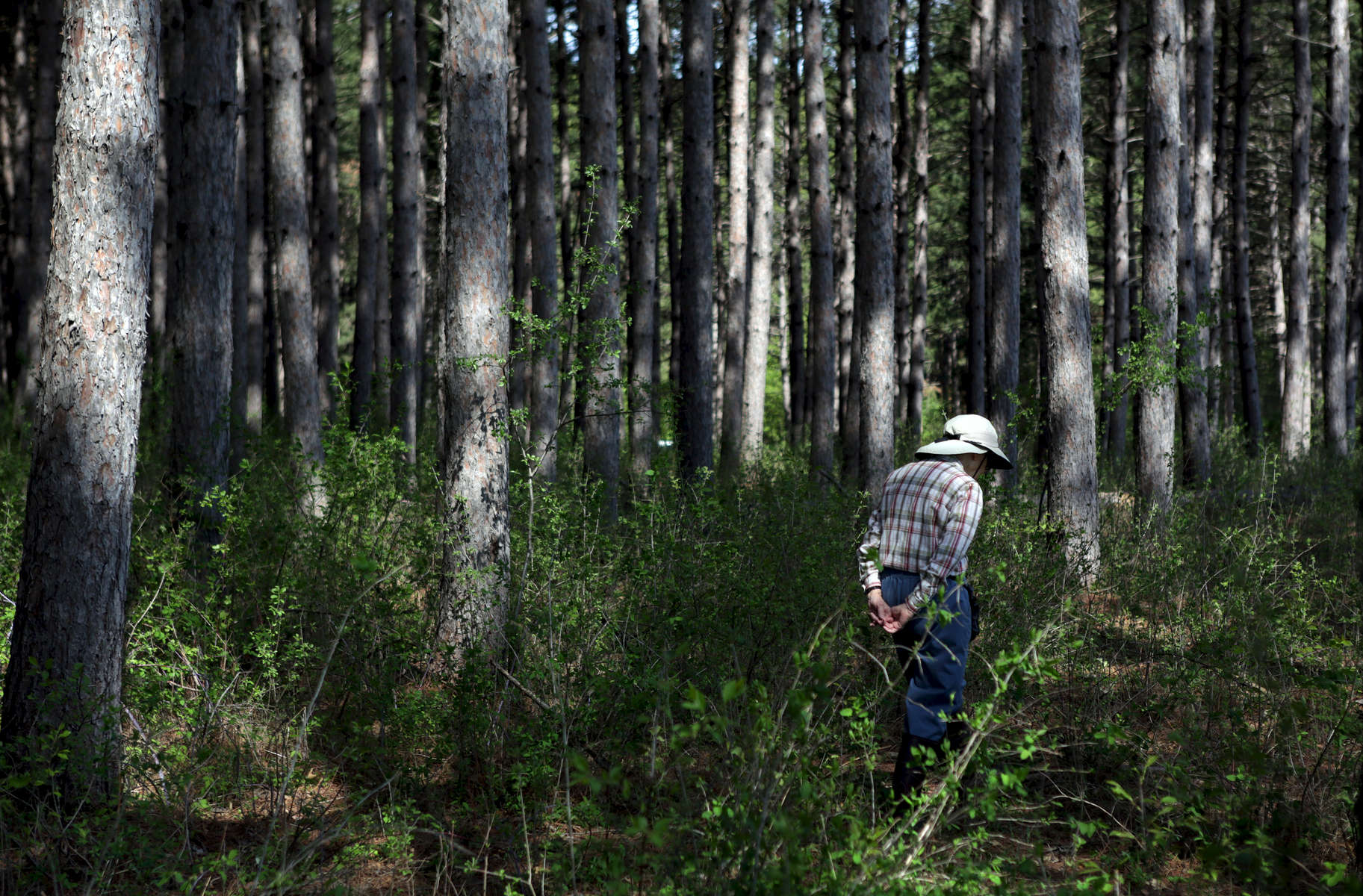 Hope Lea walks through the woods during an orienteering exercise at Belwin Conservancy in Afton, Minn. Hope and her husband Chuck have been volunteering at Belwin for 23 years, both monitoring bluebirds and helping school children with educational programs.