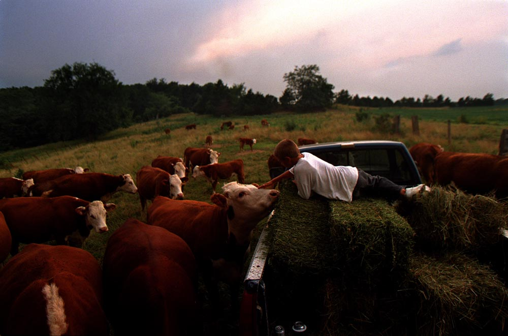 Following a full day in the field bailing hay, John Fick unwinds in the bed of his fatherís pickup while his family and friends finish the chore in the last light of the day.