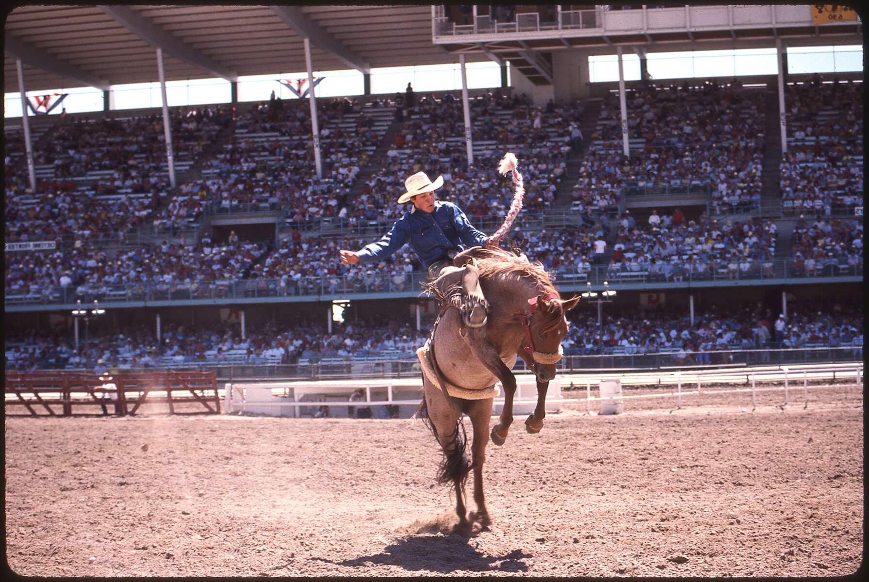 009_-rodeo