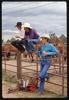 017_-cowboys