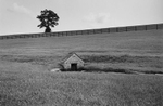 Sarah_Hoskins_001-_The-Homeplace