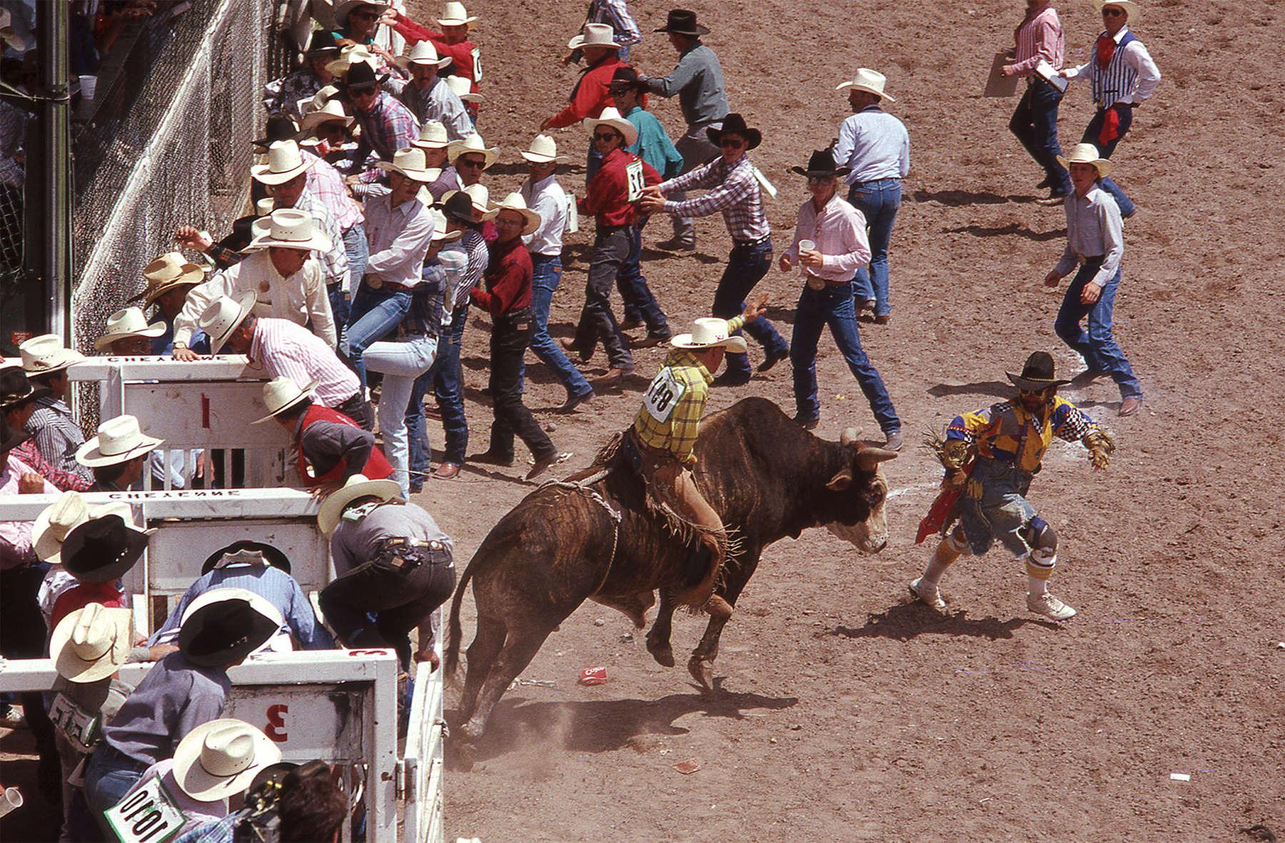 Sarah_Hoskins__rodeo__bullrider