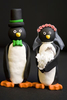 Creative ring shot of penguin cake toppers with wedding rings at Mystic Aquarium