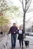 couple and their dogs in Brooklyn during their engagement session. Brooklyn wedding photographers