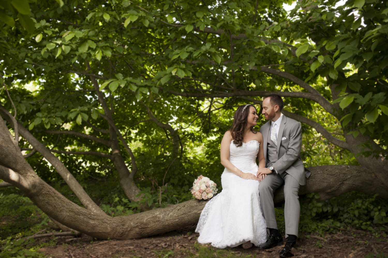 bride and groom sitting on a tree before their wedding at Rutgers Gardens. NJ wedding photographers